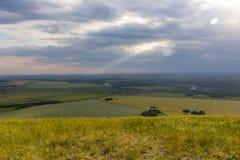 森林、领域和两唯一山风景  图库摄影