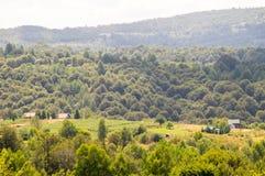森林、领域和山狄那里克阿尔卑斯山脉在塞尔维亚 库存图片