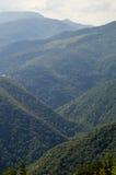 森林、领域和山狄那里克阿尔卑斯山脉在塞尔维亚 库存照片