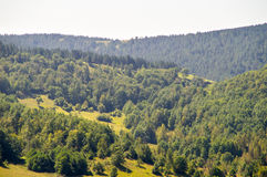 森林、领域和山狄那里克阿尔卑斯山脉,塞尔维亚 库存照片