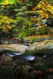 森林与小河的秋天风景 库存图片