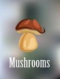 森林五颜六色的蘑菇 免版税图库摄影