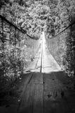 森林人行桥黑白的危地马拉 免版税库存图片