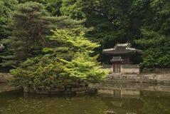 森林从事园艺韩国汉城南寺庙 图库摄影