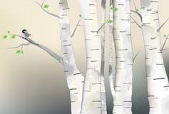 森林例证和鸟 图库摄影