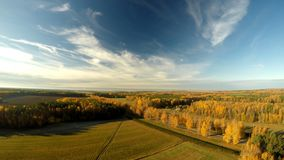 森林俄罗斯的秋天风景 鸟瞰图 库存图片