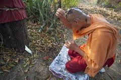 森林修士 免版税图库摄影