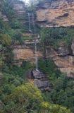 森林全景雨瀑布 免版税库存照片