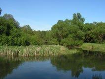 55 森林公园'DROZDY'在米斯克白俄罗斯 免版税库存图片