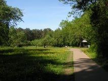 2 森林公园'DROZDY'在米斯克白俄罗斯 库存照片