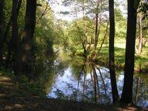 4 森林公园'DROZDY'在米斯克白俄罗斯 免版税库存照片