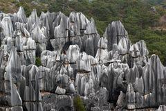 森林公园shilin石头 云南,中国 免版税库存图片