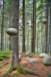 森林公墓在Vydrovo,斯洛伐克 免版税库存图片