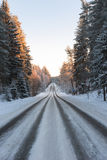 森林公路多雪的冬天 免版税库存照片