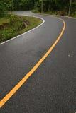 森林公路绕 免版税库存照片