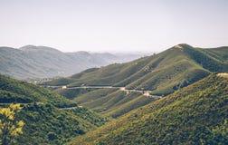 森林公路通过优胜美地国家公园 挂接通过 免版税库存图片