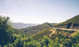 森林公路通过优胜美地国家公园 风景山口 免版税图库摄影
