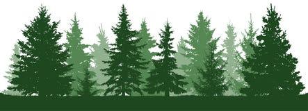 森林冷杉木剪影 具球果绿色云杉 库存例证