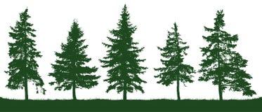 森林冷杉木剪影 圣诞节我的投资组合结构树向量版本 向量例证
