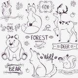 森林动物剪影 库存照片