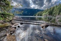 森林包围的冰河黑湖 免版税库存照片