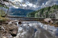 森林包围的冰河黑湖 免版税图库摄影