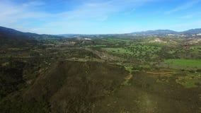 森林区域和绿色领域全景空中射击  影视素材
