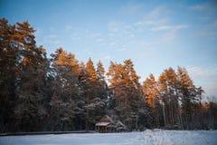 森林原木小屋在冬天森林 免版税库存照片