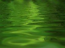 森林反射的水 免版税图库摄影