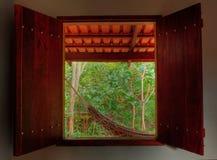 森林吊床热带雨的手段 免版税库存照片