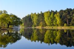 森林和天空在森林湖的镇静大海被反射 在美丽的鸟云彩之上颜色及早飞行金子早晨本质宜人的平静的反映上升海运一些星期日 库存图片