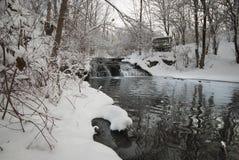 森林和小河在一个公园在冬天 库存图片