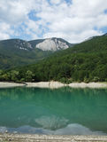 森林和山在湖附近 免版税图库摄影