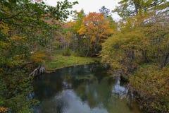 森林和河在Chuzendji湖附近 免版税库存图片