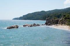 森林和海halkidiki的,希腊 库存照片