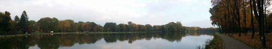 森林和湖在水中环境美化与镜象反射 免版税库存图片