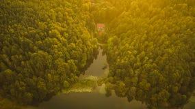 森林和湖鸟瞰图在夏天日落期间 免版税库存图片
