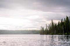 森林和湖 库存照片