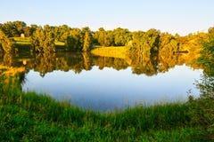 森林和湖水 免版税图库摄影