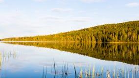 森林和湖 库存图片