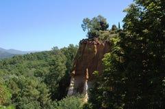 森林和自然在意大利 库存图片