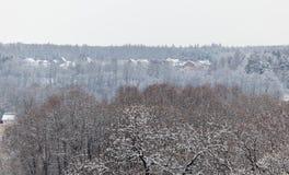 森林和节假日村庄。 俄国。 免版税库存照片