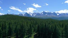 森林和Mt空中射击  敞篷,俄勒冈空中慢动作4k 股票录像