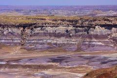 森林国家公园石化了 免版税库存图片