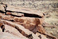 森林国家公园石化刻在岩石上的文字 免版税库存图片