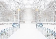 森林在与一座蓝色桥梁和光的冬天在一多雪的天 库存照片