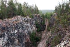 森林在卡累利阿,在峡谷附近 图库摄影