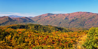 森林在发烟性山国家公园 免版税库存图片