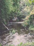 森林在夏天包围的山河-减速火箭的葡萄酒 库存图片