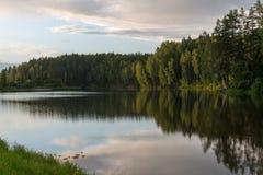 森林在夏天包围的山河 库存图片